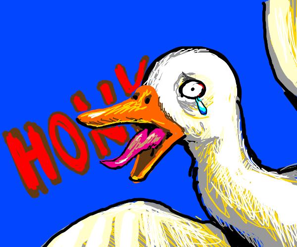 """""""NOOOOOOO"""" - translated to Goose"""