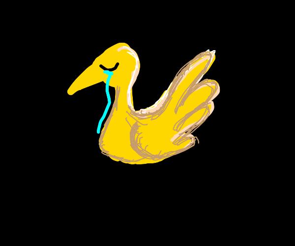 woeful sobbing yellow duck