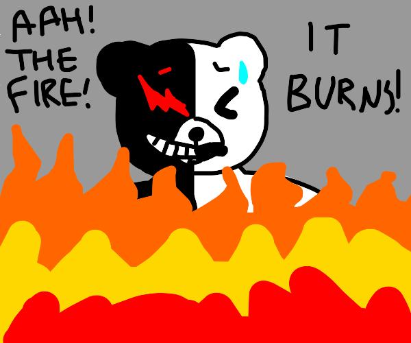 teddy bear hates fire