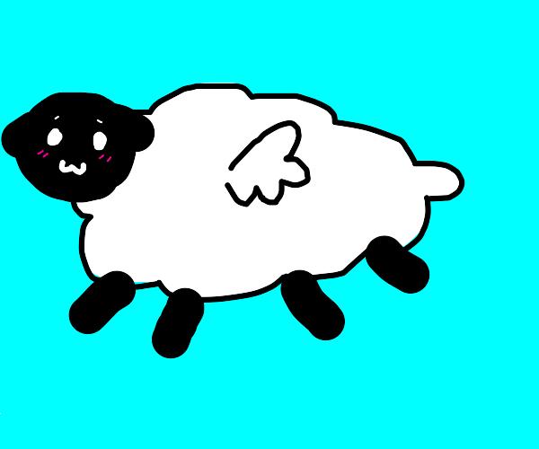 sheep flying