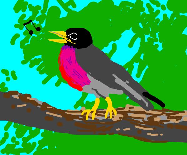 Bird singing in tree