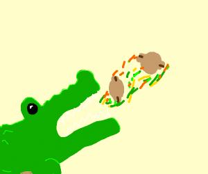 Crocodile vomiting Walnuts