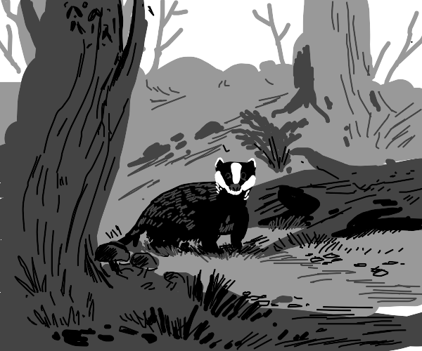 A Badger in a forest