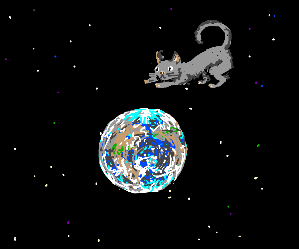 space godcat is watching over earth