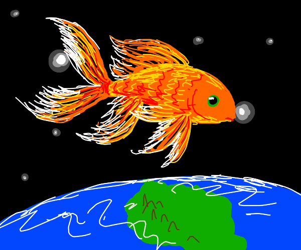 fish out of water, but out of the entire worl