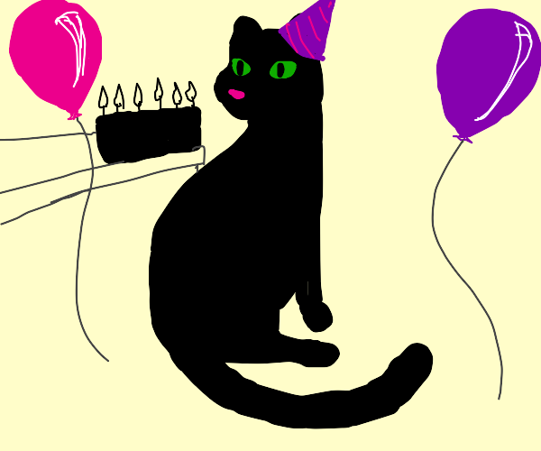 Bday party for a void cat