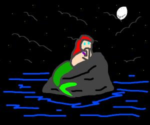 Ariel on a rock