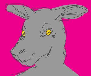 Goat furry