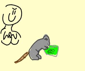 rat drinks rat poison
