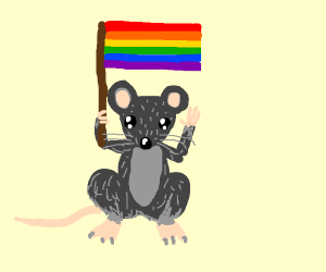 gay mouse