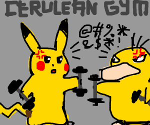 Pokemon gym fight