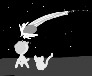 Man and cat watching stars