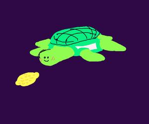 Baby Turtle Drawception