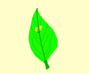 Leaf with yellow eyes