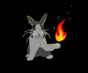 Firebending bunny