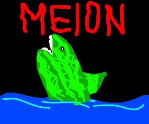 Melon Shark