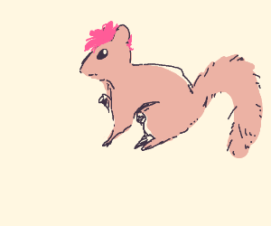 pink-haired squirrel