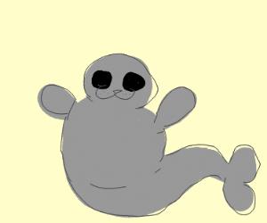 water dog (seal) isn't fat just big bones