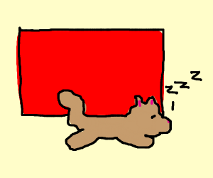 Cat sleeping in front of red screen.