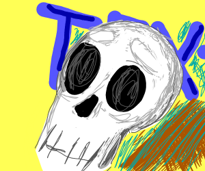 Text behind a skull