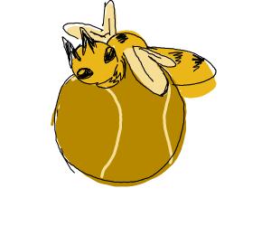 Bee-sketball