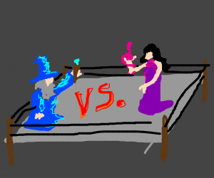 Wizard vs Sorceress