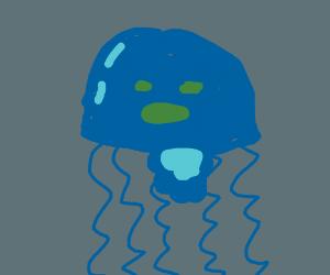 Shocked Blue Jellyfish (!)