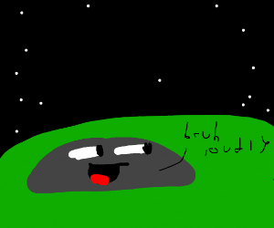 Bruh says rock loudly on quiet starry night