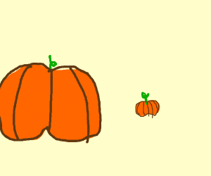 A Big and a little pumkin