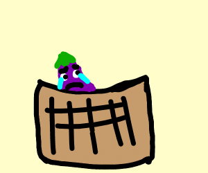 a lonely eggplant in a basket