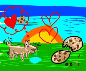 Puppy loves cookie