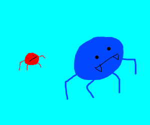 red spider catches up to blue spider