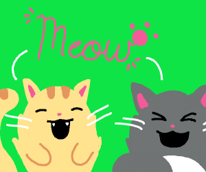 Cats saying meow