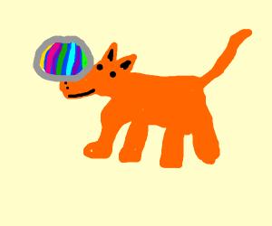 Orange dog balancing pink ball on it's nose