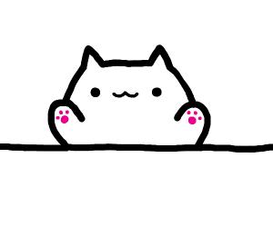 Direct view of Bongo Cat.