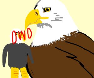 OwO eagle furry