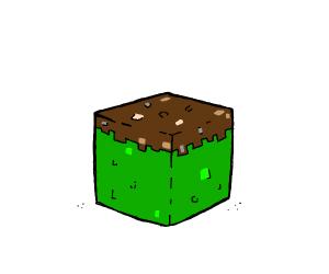 Reverse grass block