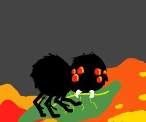 Spider surfing with a leaf on STRANGE LIQUID