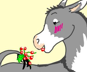 Happy donkey with berries