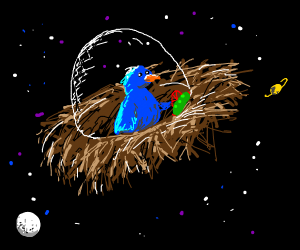 bird in space with nest