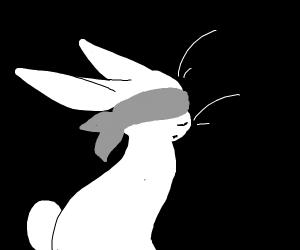 Blindfolded bunny