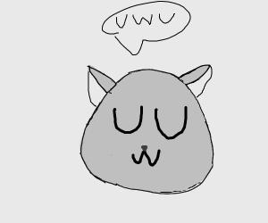 UwU cat