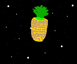 pineapple in space