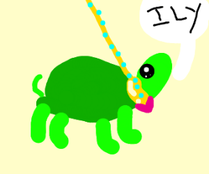 Turtle on a leash