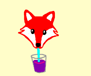 Red fox drinks grape juice