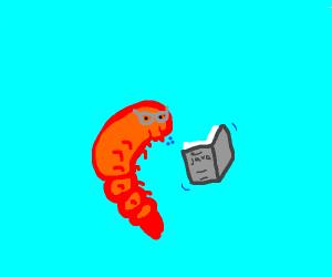 Geeky Shrimp