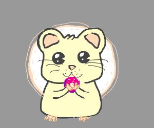 Kawaii hamster eating donut