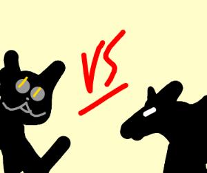 Cat vs Rat