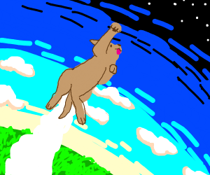 dog flying to space