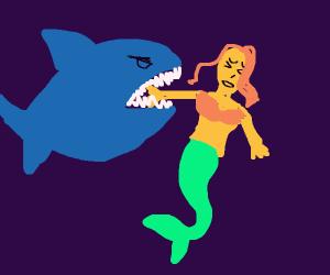 shark voring a mermaid